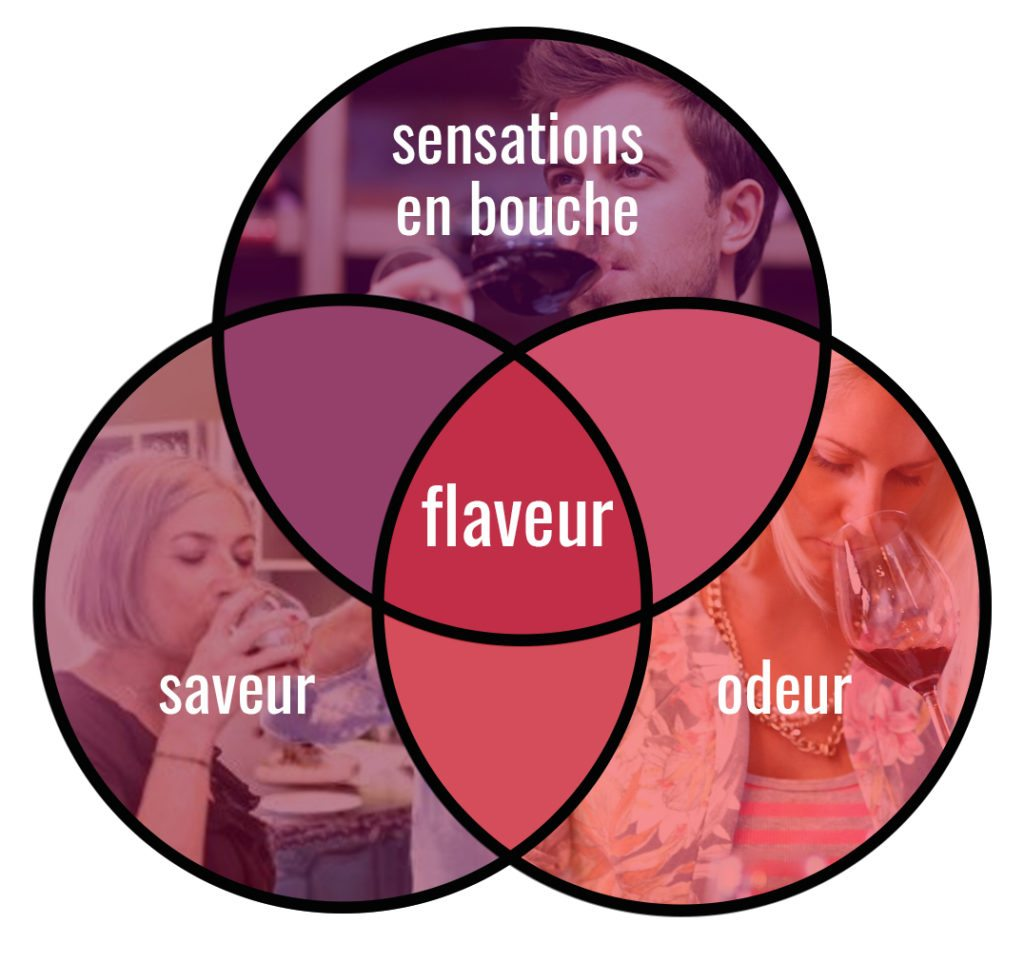 craft-and-cork-French-flavour-venn-diagram
