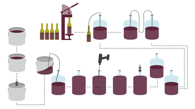 Winemaking Process Rjs Craft Winemaking